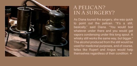 Surgery Newsletter